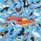 Birds of North America, 644216570591