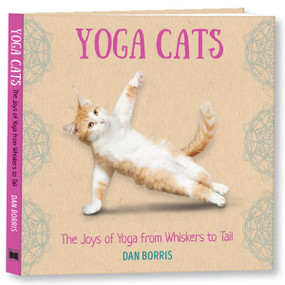 Yoga Cats by Dan Borris, 9781531914868