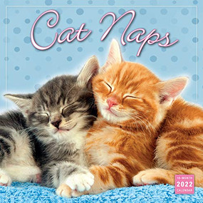 Cat Naps 2022 Wall Calendar 16-month by Sellers Publishing, Inc., 9781531912284