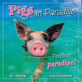 Pigs in Paradise 2022 Wall Calendar 16-month by Sellers Publishing, Inc., 9781531912604