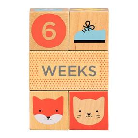Wooden Blocks Baby Milestones by Petit Collage, 5055923778975