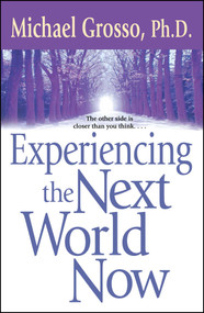 Experiencing the Next World Now by Michael Grosso, 9780743471053