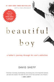 Beautiful Boy (A Father's Journey Through His Son's Addiction) by David Sheff, 9780547203881