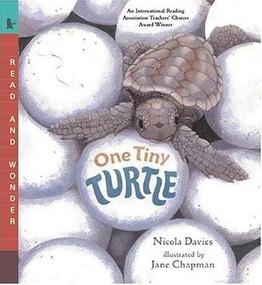 One Tiny Turtle (Read and Wonder) by Nicola Davies, Jane Chapman, 9780763623111