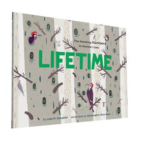 Lifetime (The Amazing Numbers in Animal Lives) - 9781452152103 by Lola M. Schaefer, Christopher Silas Neal, 9781452152103