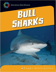 Bull Sharks - 9781624314810 by Tammy Kennington, 9781624314810