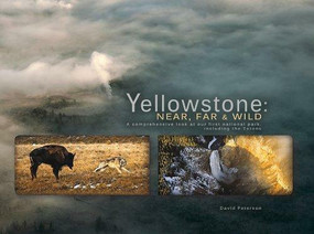 Yellowstone - 9781591521303 by David William Peterson, 9781591521303