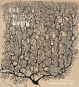 The Beautiful Brain (The Drawings of Santiago Ramon y Cajal) by Larry W. Swanson, Eric Newman, Alfonso Araque, Janet M. Dubinsky, 9781419722271