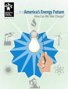 America's Energy Future (How Can We Take Charge?) by Andy Mead, 9780945639725