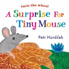 A Surprise for Tiny Mouse by Petr Horacek, Petr Horacek, 9780763679675