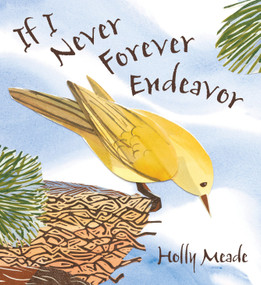 If I Never Forever Endeavor by Holly Meade, Holly Meade, 9780763640712