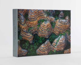 Art Wolfe: Extraordinary Earth Blank Boxed Notecards by Art Wolfe, 9781608879564