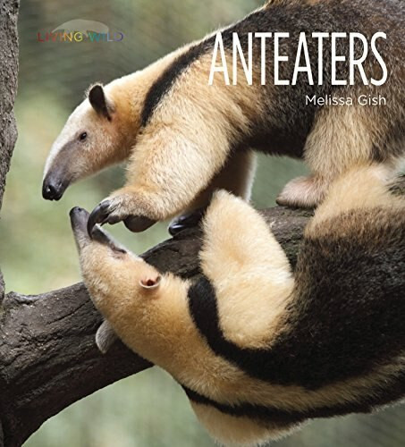 Anteaters by Melissa Gish, 9781628325607