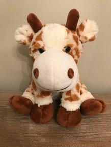 Giraffe Kit with recorder