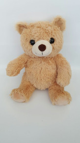 Teddy Bear Kit with Recorder