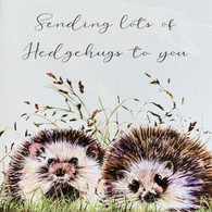 Hedgehogs Card