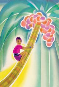 Coco-Palm