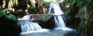 Standard Photo Board: Waterfalls Hilo Hawaii - AMER