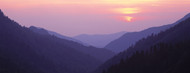 Standard Photo Board: Great Smoky Mountains National Park TN - AMER