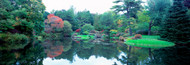Extra Large Photo Board:  Pond in Asticou Azalea Garden - AMER
