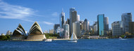 Standard Photo Board: Sydney Skyline with Sailboat - AMER