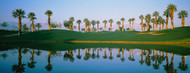 Standard Photo Board: Golf Course Marriott Palms AZ - AMER