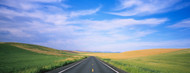 Standard Photo Board: Road Through Palouse Country - AMER