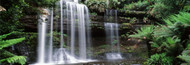 Extra Large Photo Board: Waterfall Mt. Field National Park - AMER