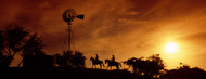 Standard Photo Board: Cowboys at Sunset - AMER