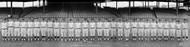 Washington Senators Baseball Team of 1921