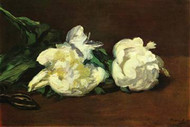 Still Life White Peony by Edouard Manet