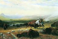 Last Buffalo