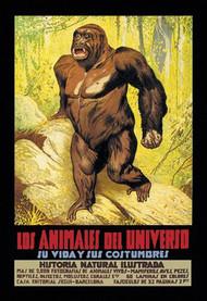 Los Animales del Universo