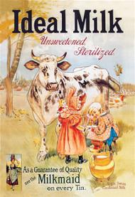 Ideal Milk: Unsweetened, Sterilized