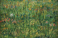 Patch of Grass by Van Gogh