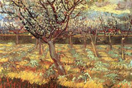 Apricot Trees in Blossom by Van Gogh