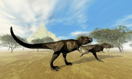 Two Tyrannosaurus Rex Dinosaurs Are On The Hunt For Prey