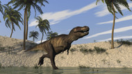 Tyrannosaurus Rex Hunting In Shallow Water III