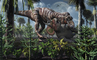 The King Of Killers, Tyrannosaurus Rex, Kills A Triceratops As Its Next Meal