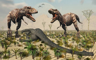 Confrontation Between A Pair Of T Rex Dinosaurs Over A Dead Sauropod II