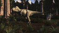 Albertosaurus Sarcophagus Wanders A Prehistoric Forest