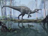 Suchomimus In A Prehistoric Marsh