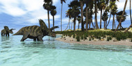 Two Coahuilaceratops Dinosaurs Wade Through Tropical Waters