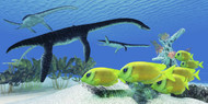 A School Of Lemonpeel Angelfish Swim By Plesiosaurus Dinosaur