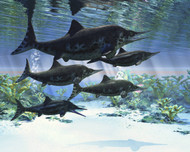 A Group Of Ichthyosaurs Swimming In Prehistoric Waters