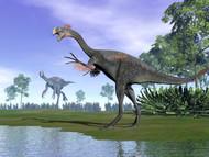Two Gigantoraptor Dinosaurs In A Prehistoric Environment