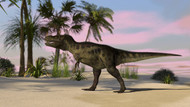 Tyrannosaurus Rex Hunting In A Tropical Environment