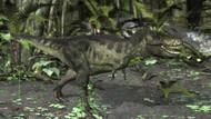 Tyrannosaurus Rex In Prehistoric Woodlands