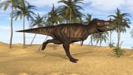 Tyrannosaurus Rex Running In A Prehistoric Environment II