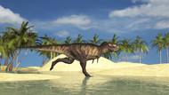 Tyrannosaurus Rex Running Through A Riverbed